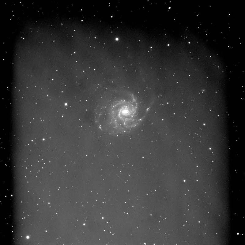 Flats bizarres, chai pu ...  M101_111