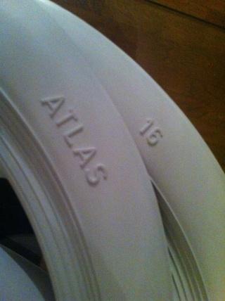 Flancs blancs Img_2912