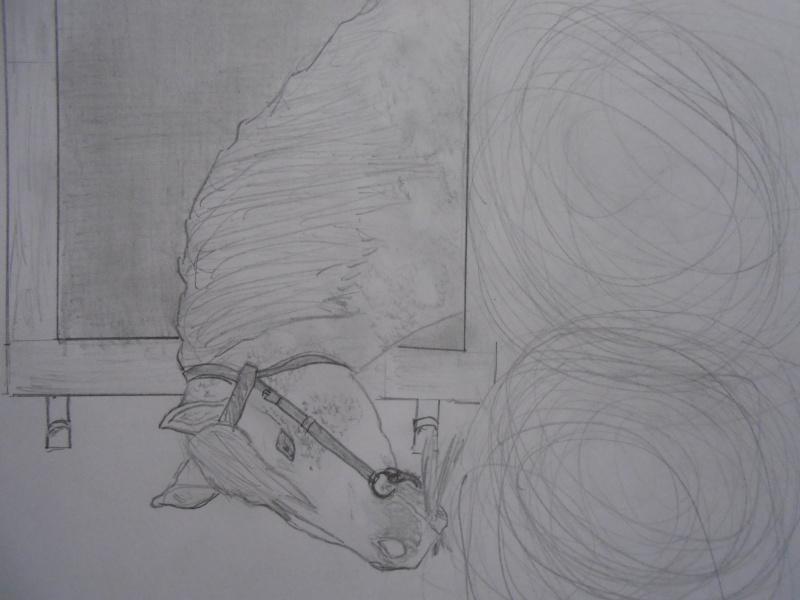 J'ai réussi voilà mes dessins et 2 photos Dscn2314