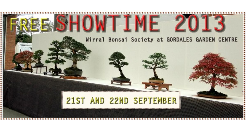 Wirral Bonsai Society Members Annual Show W-b-s_11