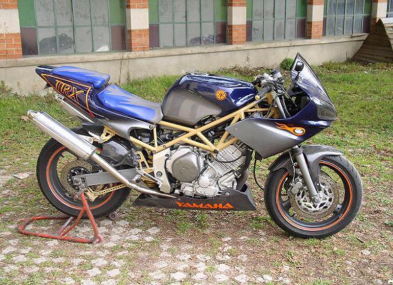 Yamaha 850 TRX - Page 2 Trix2010
