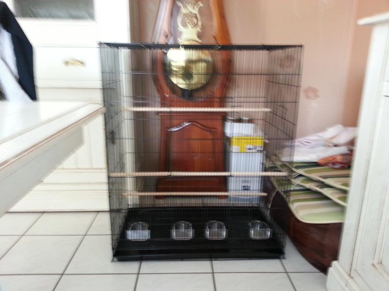 Bien choisir sa cage  2013-012