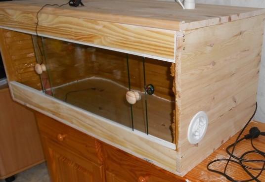 Mon premier terrarium fait main Dscn2429