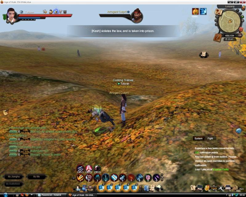 Funny screen/bugs Levita11