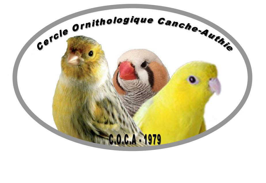 Cercle Ornithologique Canche Authie C.O.C.A Logo_c10