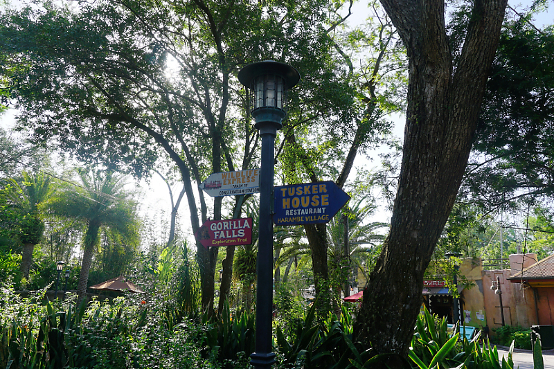 """The happiest place on Earth""  Walt Disney Wolrd Port Orléans Riverside du 11 au 20 Avril 2018 - Page 6 Dsc01927"