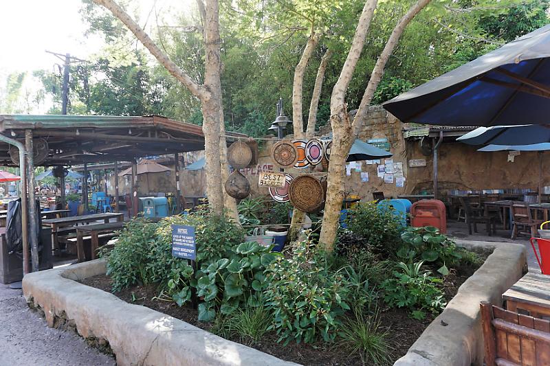 """The happiest place on Earth""  Walt Disney Wolrd Port Orléans Riverside du 11 au 20 Avril 2018 - Page 6 Dsc01932"
