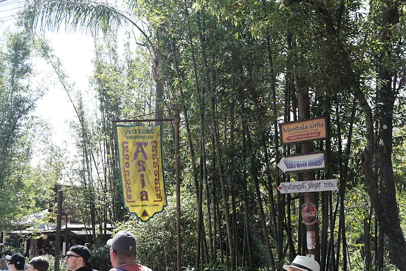 """The happiest place on Earth""  Walt Disney Wolrd Port Orléans Riverside du 11 au 20 Avril 2018 - Page 6 Dsc02021"