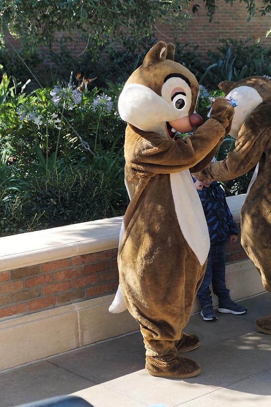 Tag 1 sur Disney Central Plaza Dsc02940