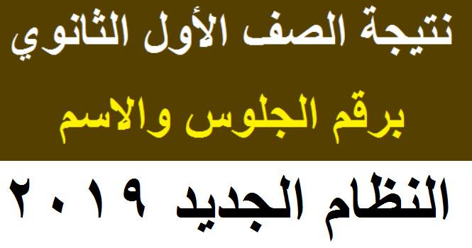 نتيجة الصف الاول الثانوي 2019 برقم الجلوس والاسم علي موقع اليوم السابع Iao_oa10