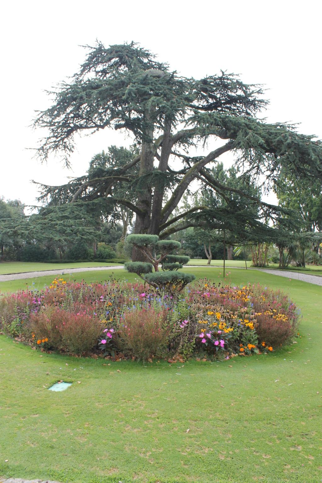 Le jardin du Château Pape Clément.  (33) Img_6323
