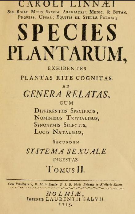 Passiflora edulis var. kerii (= Passiflora incarnata) - Page 2 P_inca10