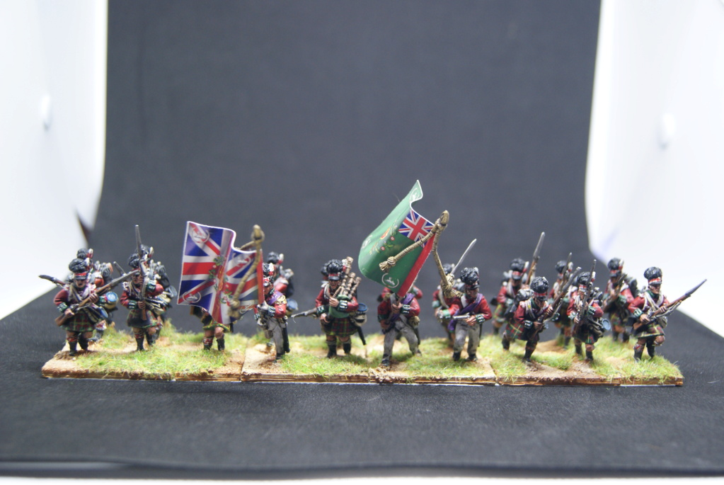 Les Anglais 1811 a fuentes de onoro Dsc06916