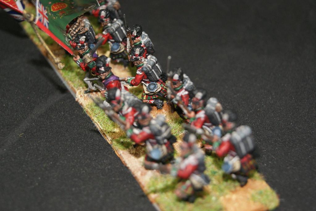 Les Anglais 1811 a fuentes de onoro Dsc06918