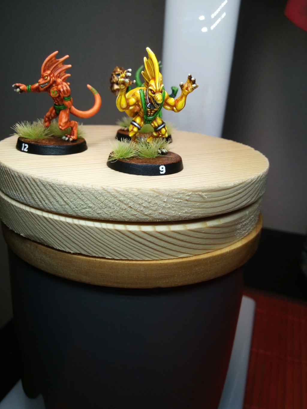 the Snakes of Zadamundra / LizardMen BloodBowl Team Project Img_2202