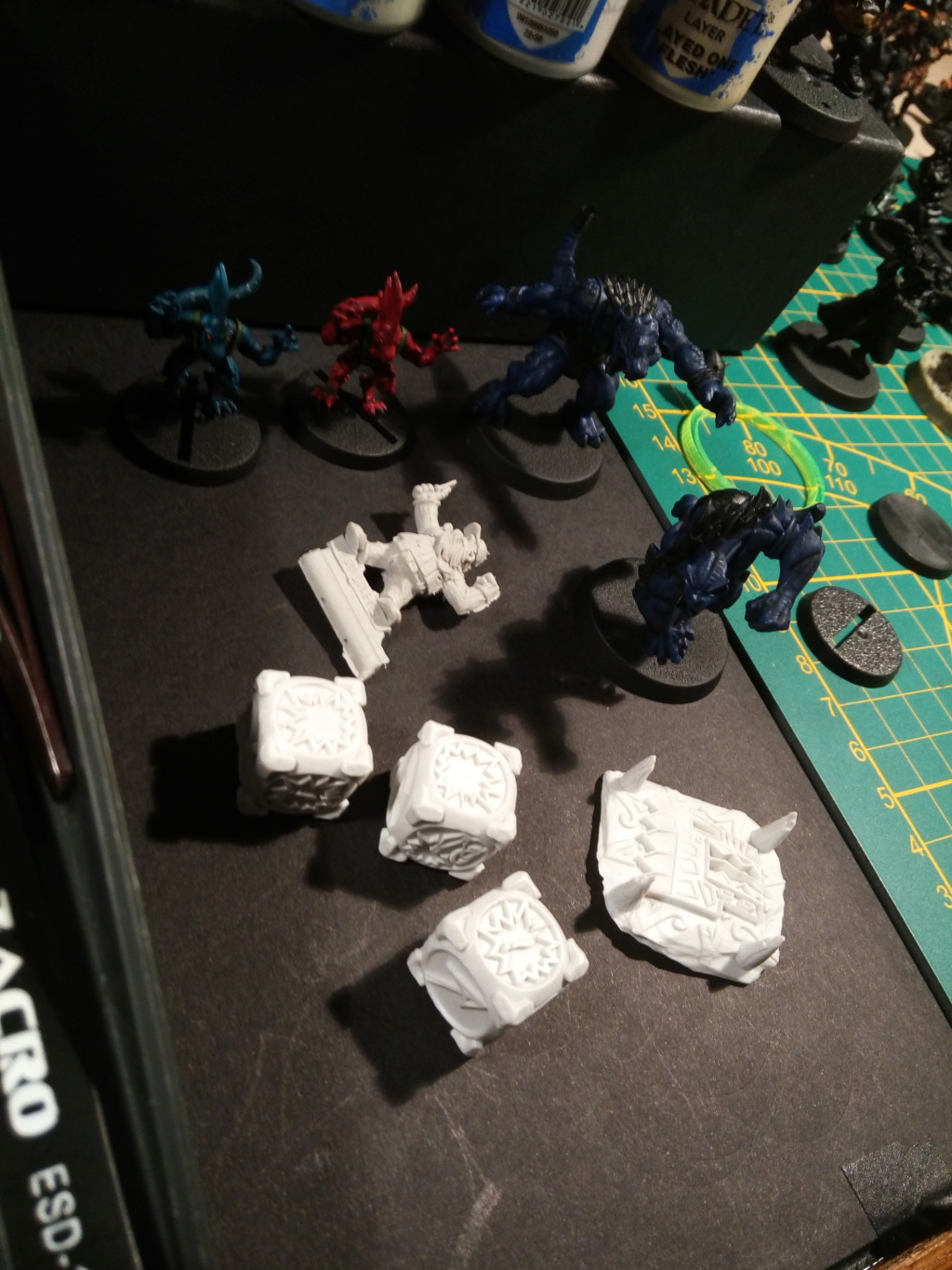 the Snakes of Zadamundra / LizardMen BloodBowl Team Project Img_2210