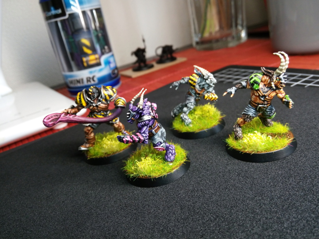 The DINKY TOYS / Chaos Chosen BloodBowl Team Img_2286