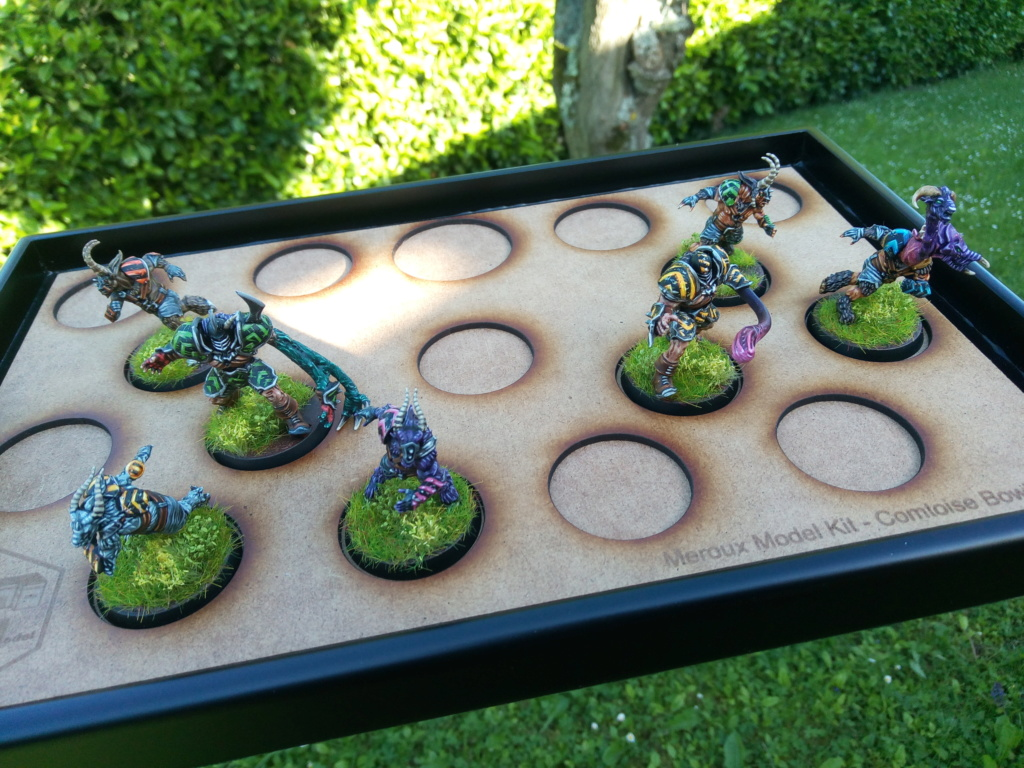 The DINKY TOYS / Chaos Chosen BloodBowl Team Img_2300