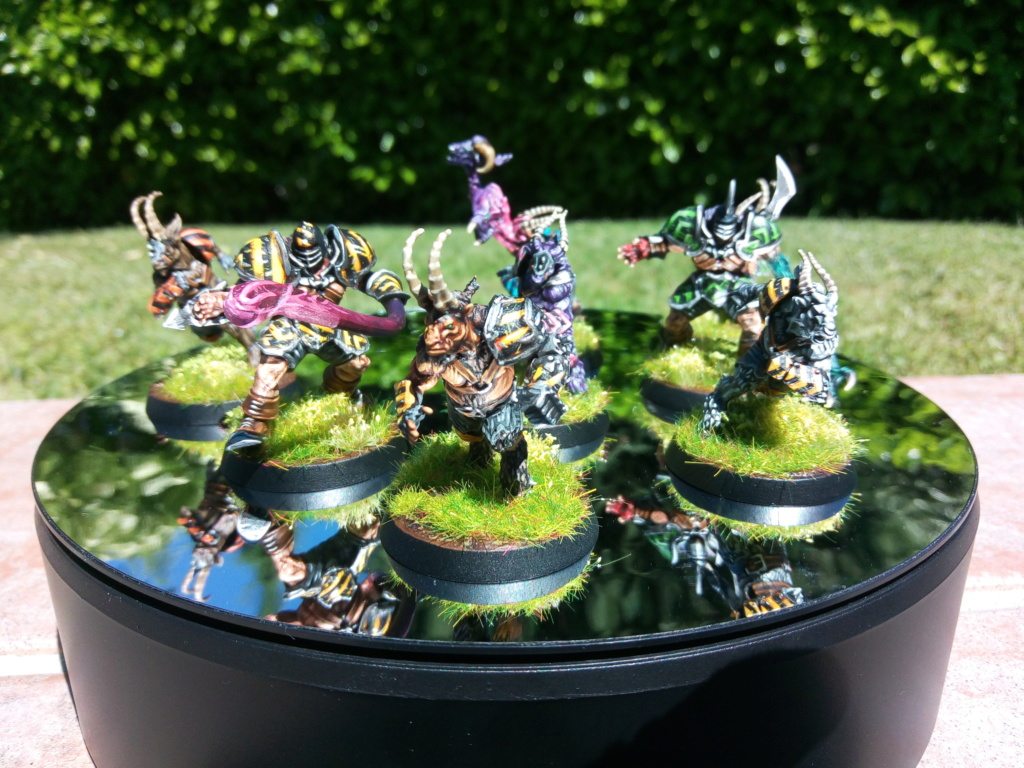 The DINKY TOYS / Chaos Chosen BloodBowl Team Img_2321