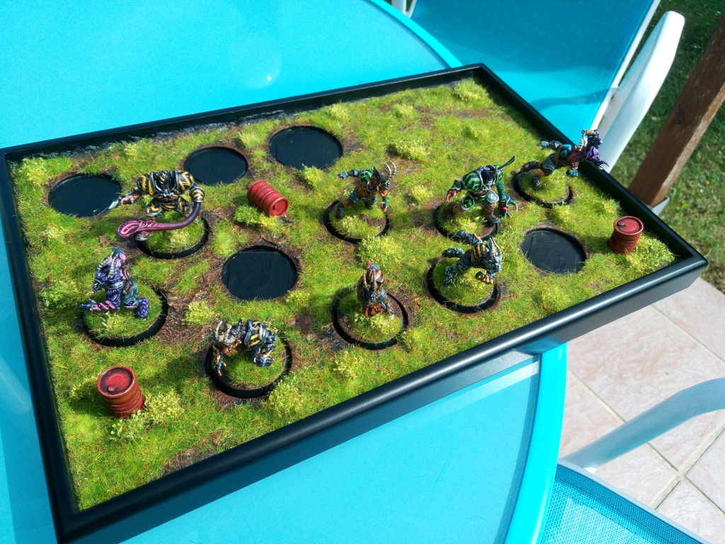 The DINKY TOYS / Chaos Chosen BloodBowl Team Img_2332