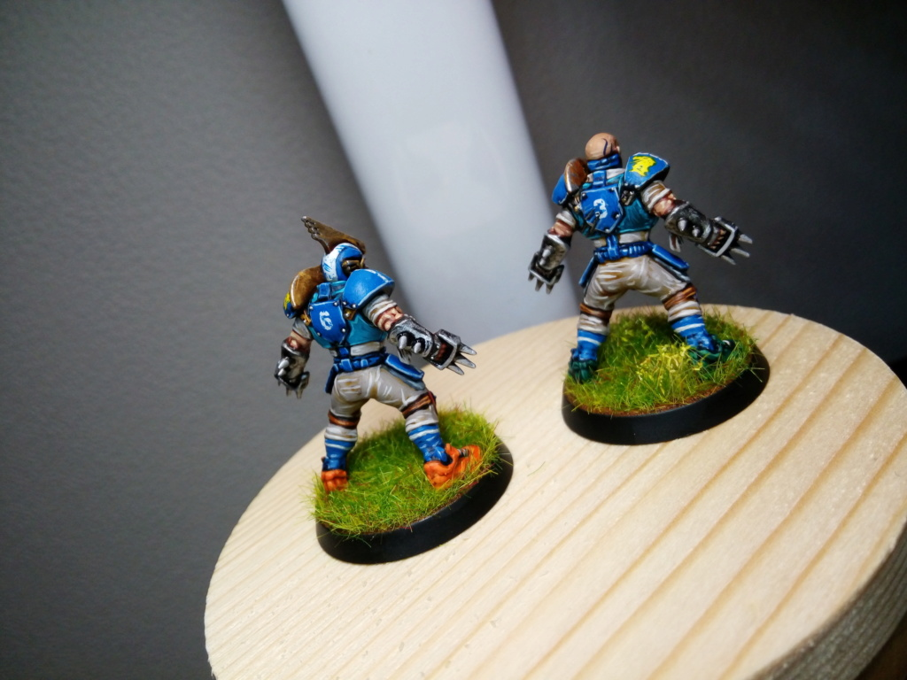 the Reikland Reavers / Emblematic  Human Blood Bowl Team Reikla10
