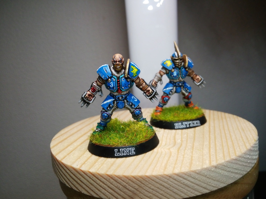 the Reikland Reavers / Emblematic  Human Blood Bowl Team Reikla11