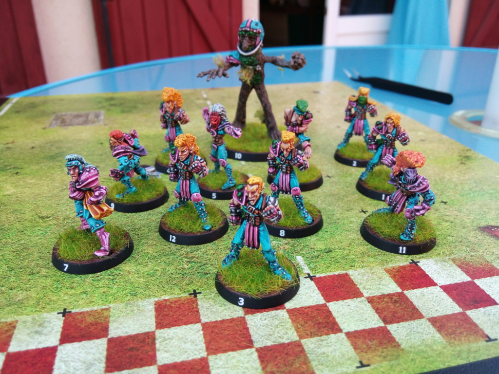 The Screaming Trees / BloodBowl Wood Elves Team The_sc10