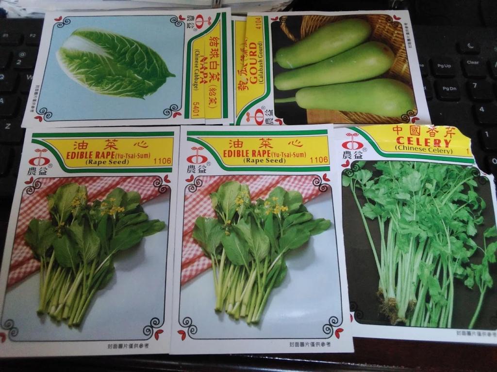 Vườn rau tháng 8 Seeds10