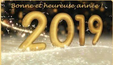 Bonne année 2019 !!!  Bonne-11