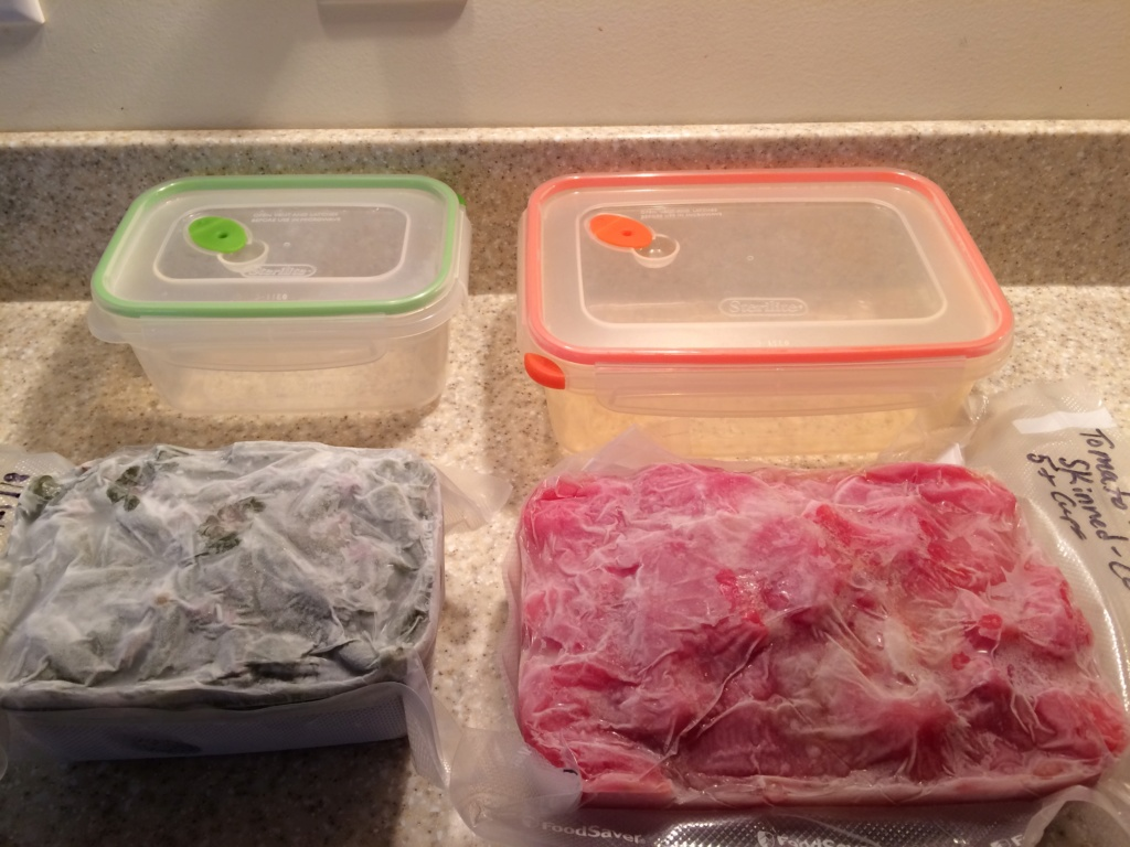 freezer containers Frozen10