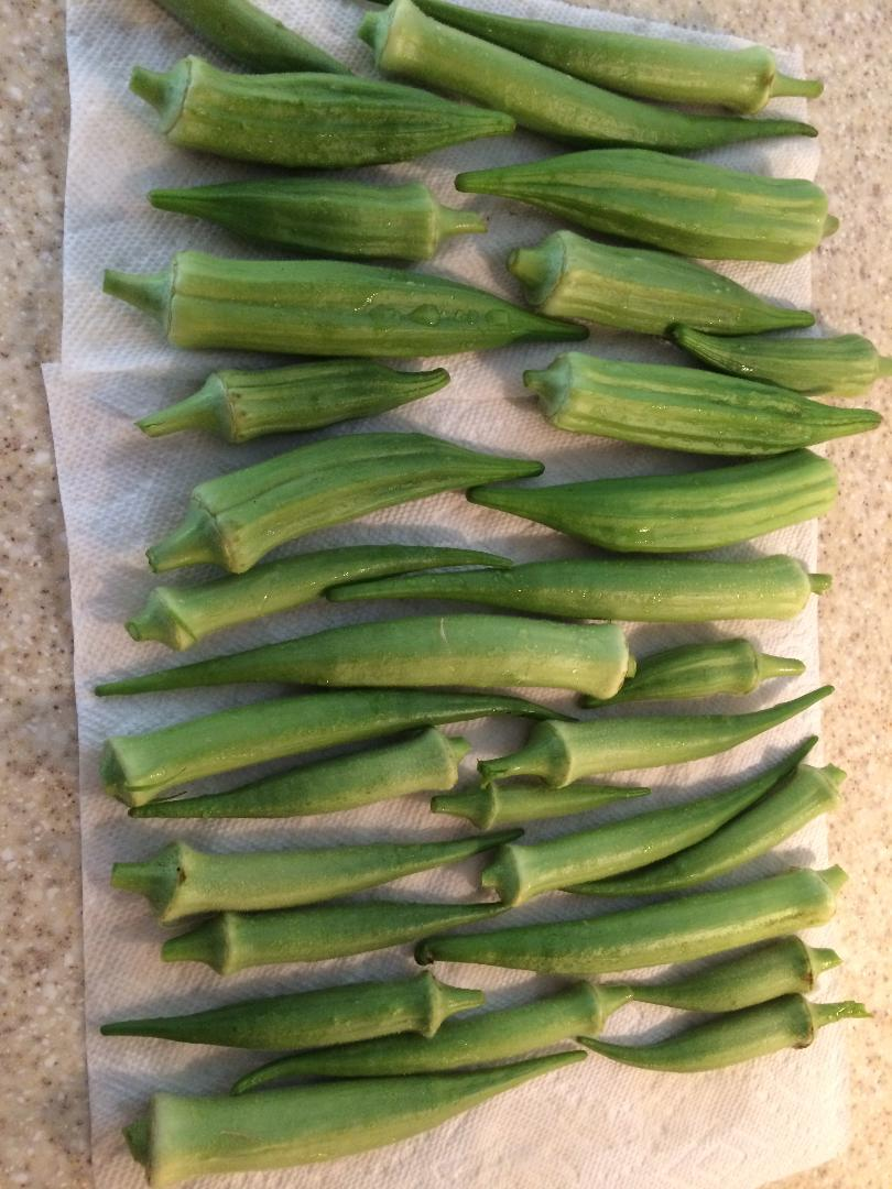Monthly Avatar: September, Show Off Your Garden Harvest! - Page 5 Okra_h10
