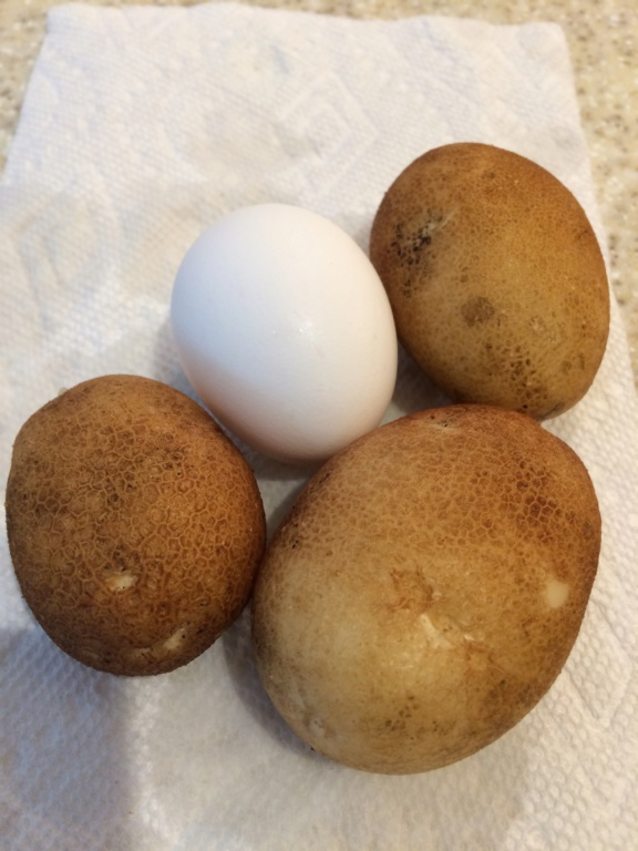 2018/2019 SFG in Brooks, GA - Page 9 Potato15