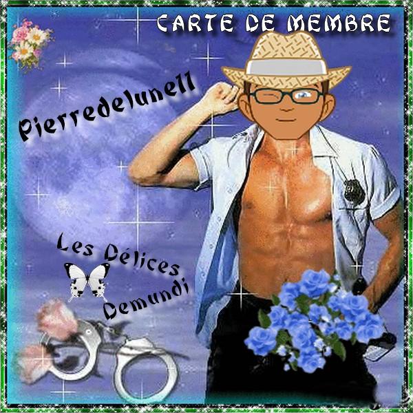 VOTRE CARTE EST PRETE    - Page 16 Pierre10