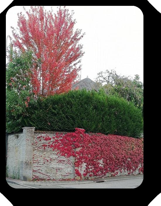 Краски осени во Франции 10_1010