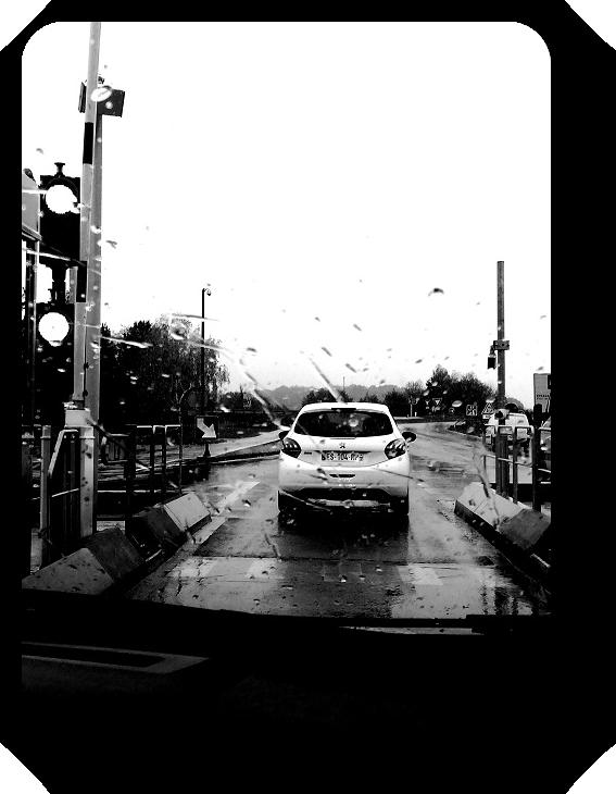 Очарование Франции в черно-белом облачении 12_1214