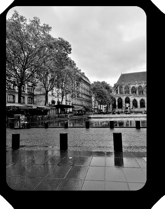 Очарование Франции в черно-белом облачении 13_1314