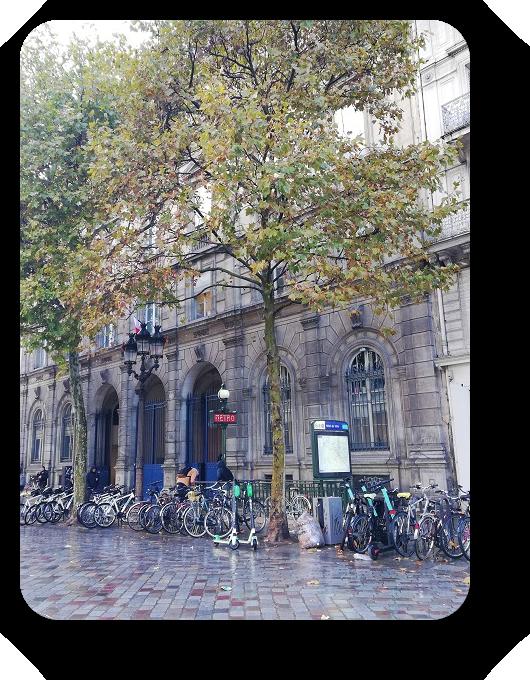 Шарм и очарование Парижа 14_1415