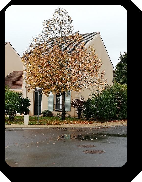 Краски осени во Франции 1_110