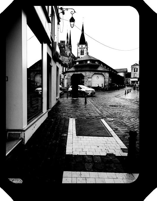Очарование Франции в черно-белом облачении 1_114