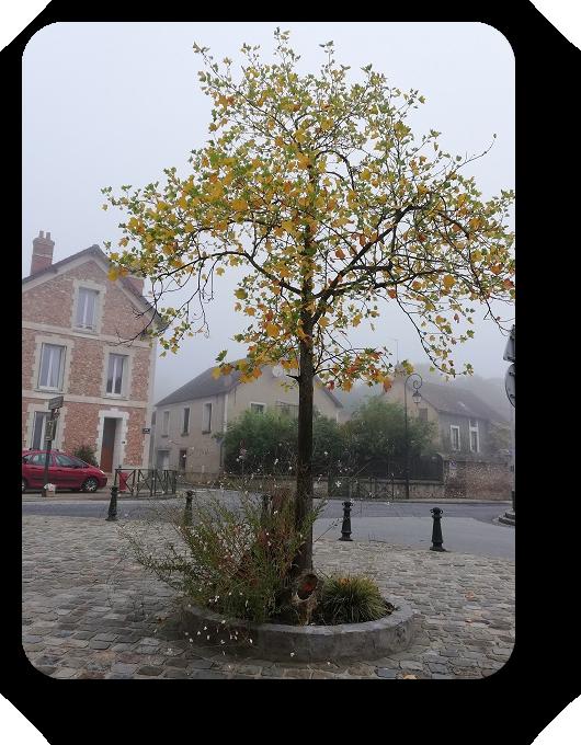 Краски осени во Франции 21_2112