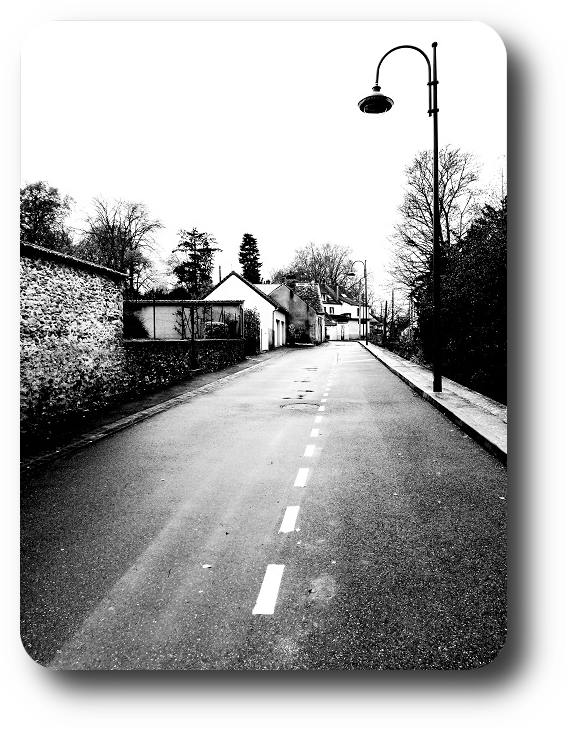Очарование Франции в черно-белом облачении 22_2216
