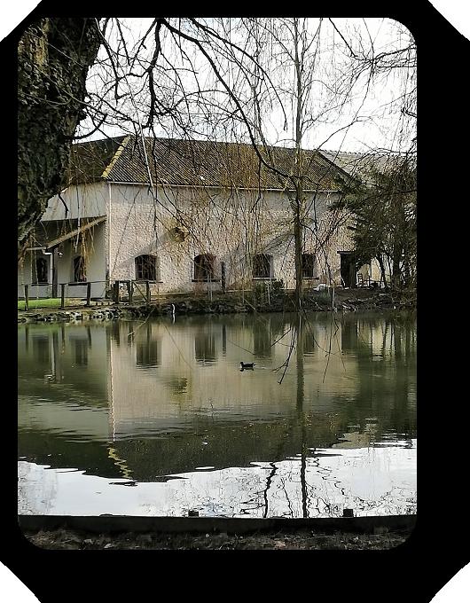 Парки и цветочные композиции французских городов 22_2219