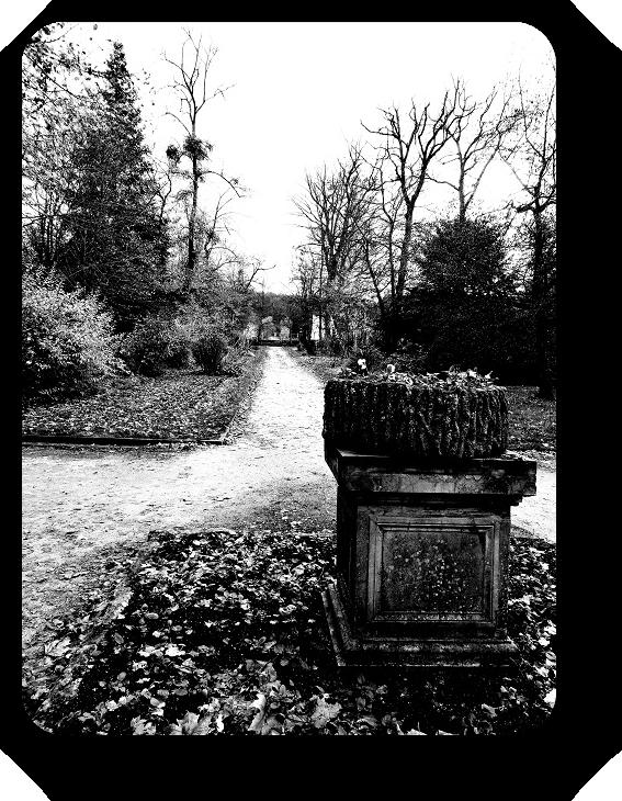 Очарование Франции в черно-белом облачении 25_2514