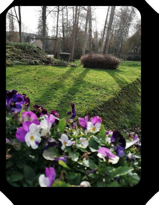 Парки и цветочные композиции французских городов 25_2516