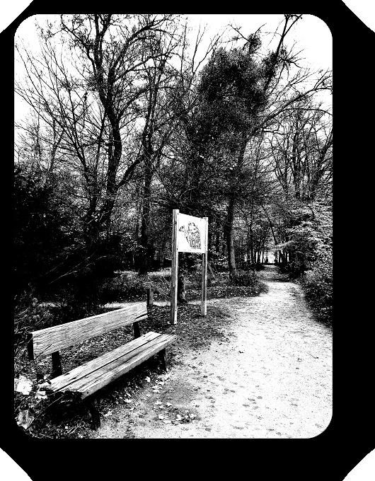 Очарование Франции в черно-белом облачении 29_2913