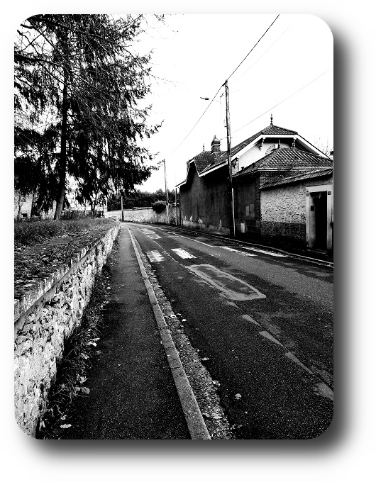 Очарование Франции в черно-белом облачении 31_3114