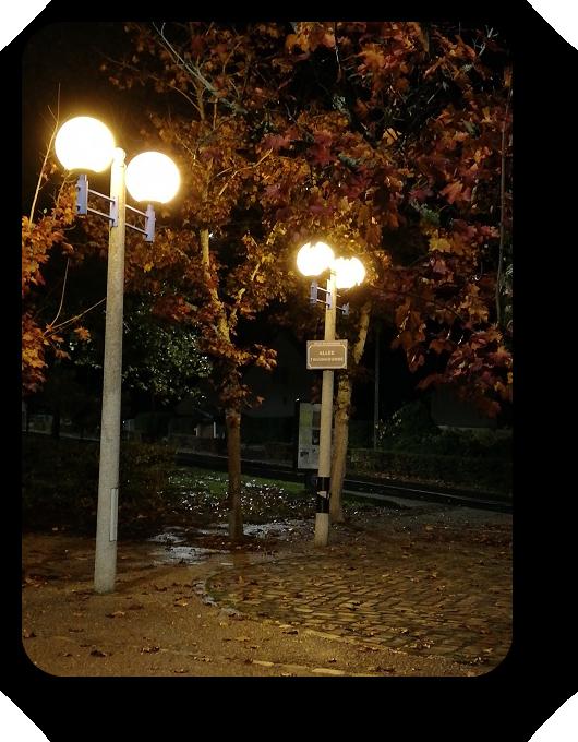 Магия французской ночи 33_3312