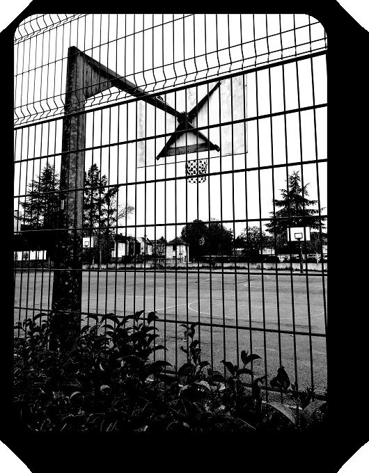 Очарование Франции в черно-белом облачении 34_3414