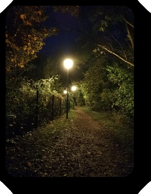 Магия французской ночи 35_3511