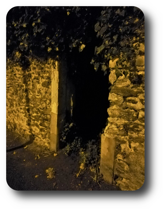 Магия французской ночи 36_3611